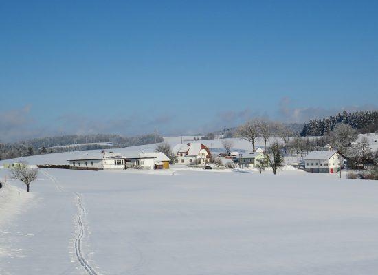 Winter-Umgebung_IMG_2257_1200x900px